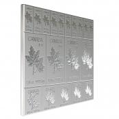 Mapleflex™  2 oz Silber 2018 - Anlagepaket