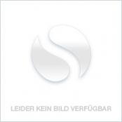 Maple Leaf 2021 Silber 1 oz, die Vorderseite der Silbermünze mit dem Ahornblatt als Motiv