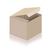 Kangaroo 1 oz Silber 2021 - Wertseite der einmaligen Silbermünze der Perth Mint