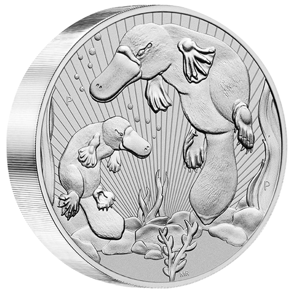 Platypus 10 oz Silber 2021