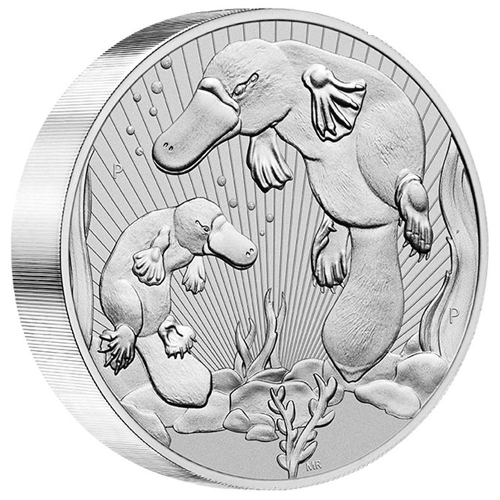 Platypus 10 oz Silver 2021